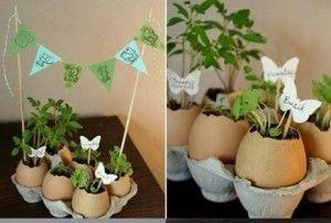 egg-shell-flowerpots-9-28
